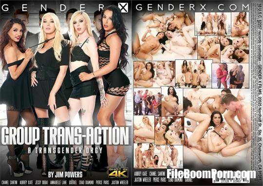 Jim Powers, GenderX: Chanel Santini, Jessy Dubai, Annabelle Lane, Aubrey Kate - Group Trans-Action [HD/720p/1.59 GB]