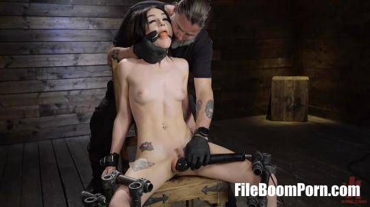DeviceBondage, Kink: Rosalyn Sphinx - Fresh Meat: Rosalyn Sphinx [HD/720p/1.58 GB]